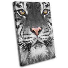 Tiger wildlife Animals - 13-1581(00B)-SG32-PO
